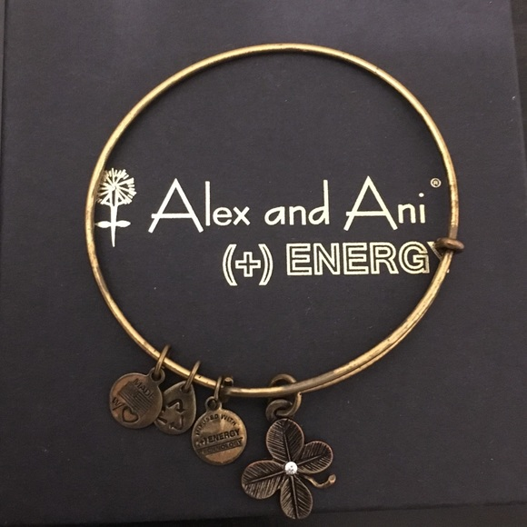 Alex and Ani Jewelry - Alex and Ani bracelet